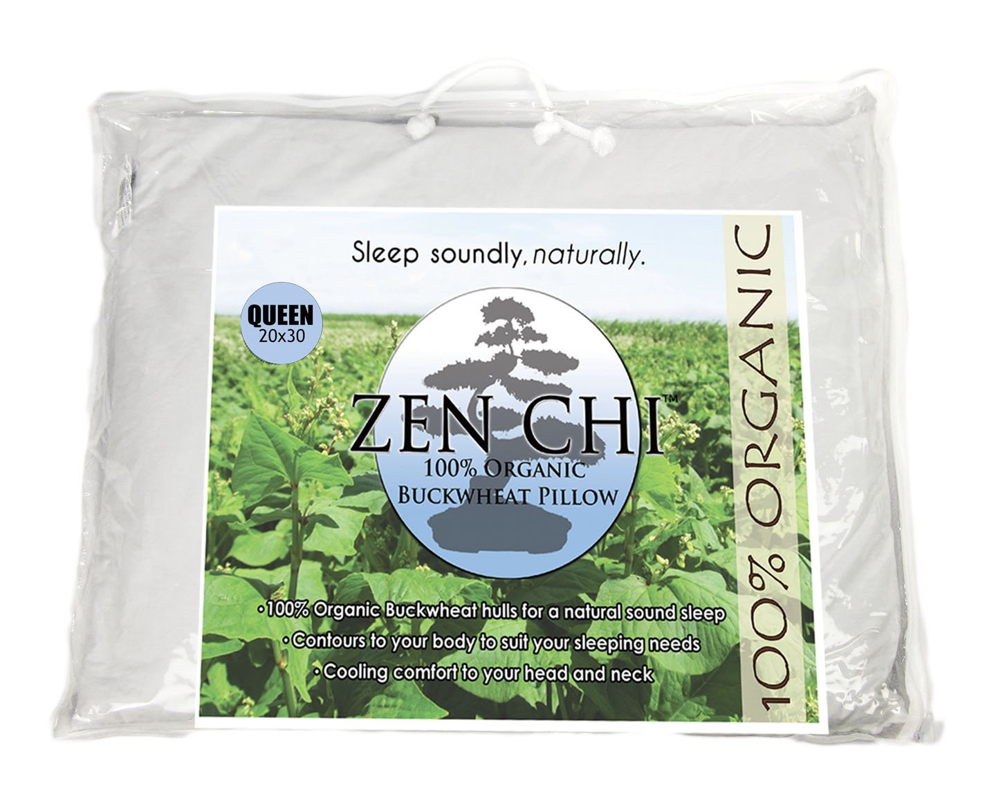 zen chi buckwheat pillow