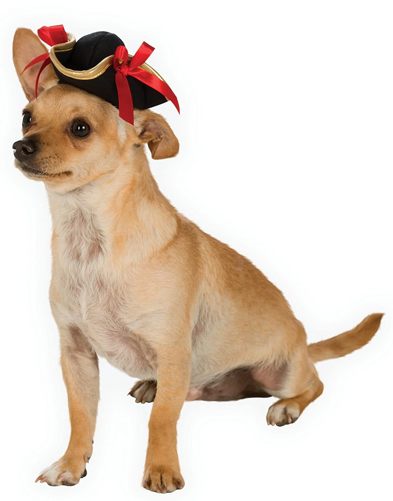 Rubie's Pirate Girl Hat Pet Costume Multicolor Medium / Large - 3