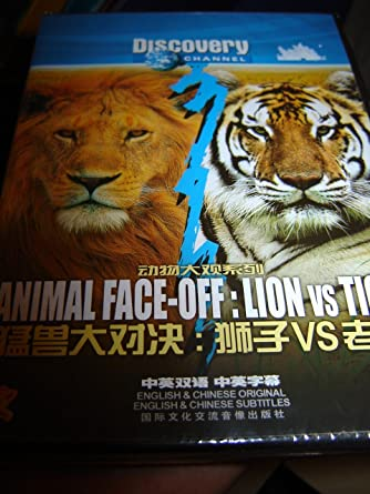 amazon com animal face off lion vs tiger discovery channel
