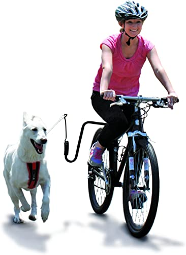 Springer-Dog-Exerciser,-Biking-with-Your-Dog