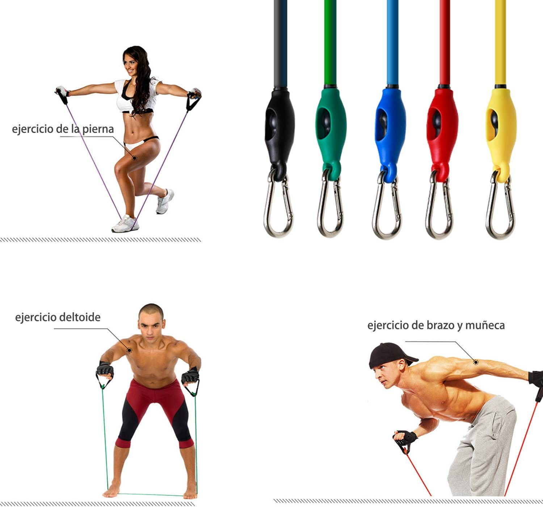 Bandas Elásticas Fitness,WiMiUS Bandas Resistencia Set 12 Bandas ...