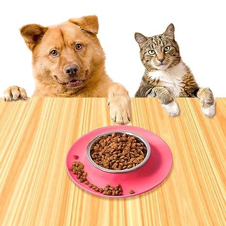 Comedero Perro Comedero Gato Comedero Mascotas Acero Inoxidable Cuenco Base de silicona Tazón Para Perro Gato