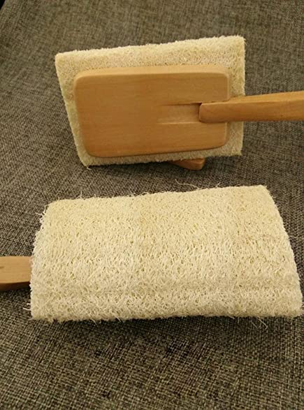 Amazon.com: Coerni Novelty Loofah Sponge Bath Scrubber with Long ...