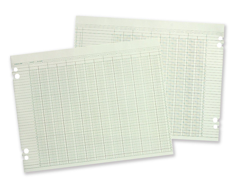 Wilson Jones Columnar Ruled Sheets, 11'' x 17'', 36 Lines, 30 Columns, 100/Pack (W50-30A)