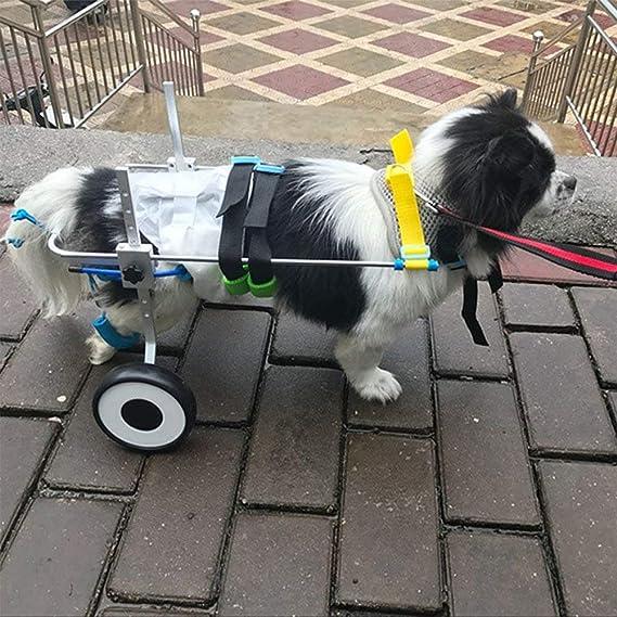 MUJING Carro Silla De Ruedas para Mascotas para Discapacitados Patas Traseras Perro Pequeño Gato/Perrito / Perrito Caminar Acero Inoxidable XXS: Amazon.es: ...