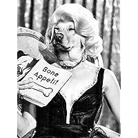 Dog FACE Woman Labrador Print ONLY Art Poster