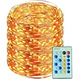 Led String Lights 99ft 300led with Remote Control Flexible Dimmable Decorative Lights Ucharge Led Starry String Fairy Copper Wire Light for Garden, Tree, Flowers, Wedding, Christmas Warm White