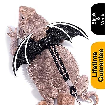 WATFOON - Arnés Ajustable para dragón Barbudo con alas Frescas ...