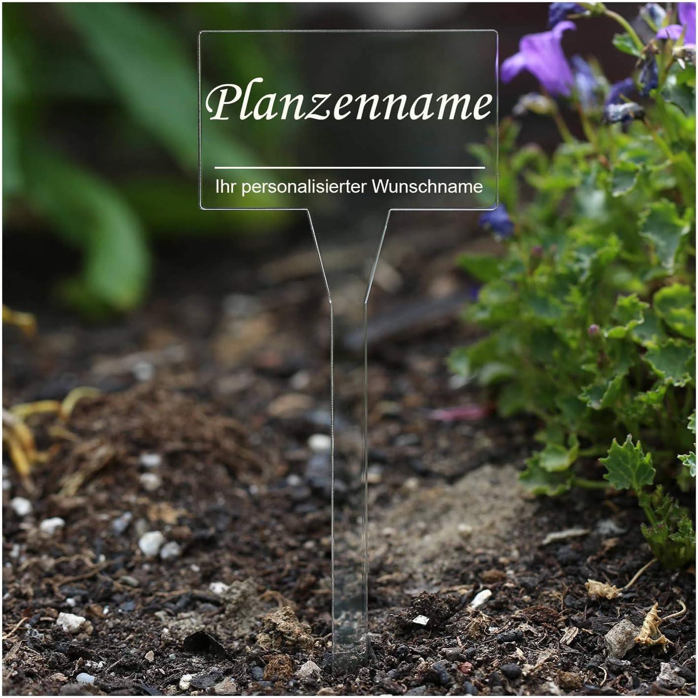 koder acrílico cristal – Etiquetas para plantas (rectangular ...