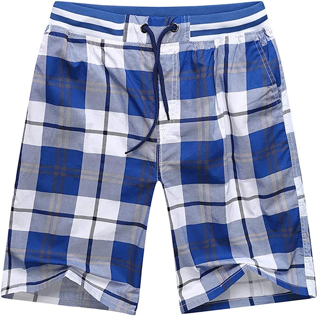 Plaid Elastic Waisted Drawstring Summer Shorts Manly Beach Activewears Holiday Casual Pants L-5XL Mens Swim Trunks