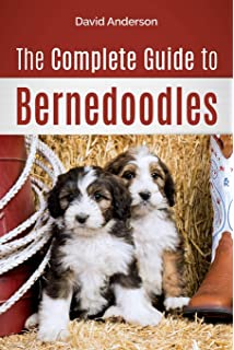Bernedoodles The Ultimate Bernedoodle Dog Manual