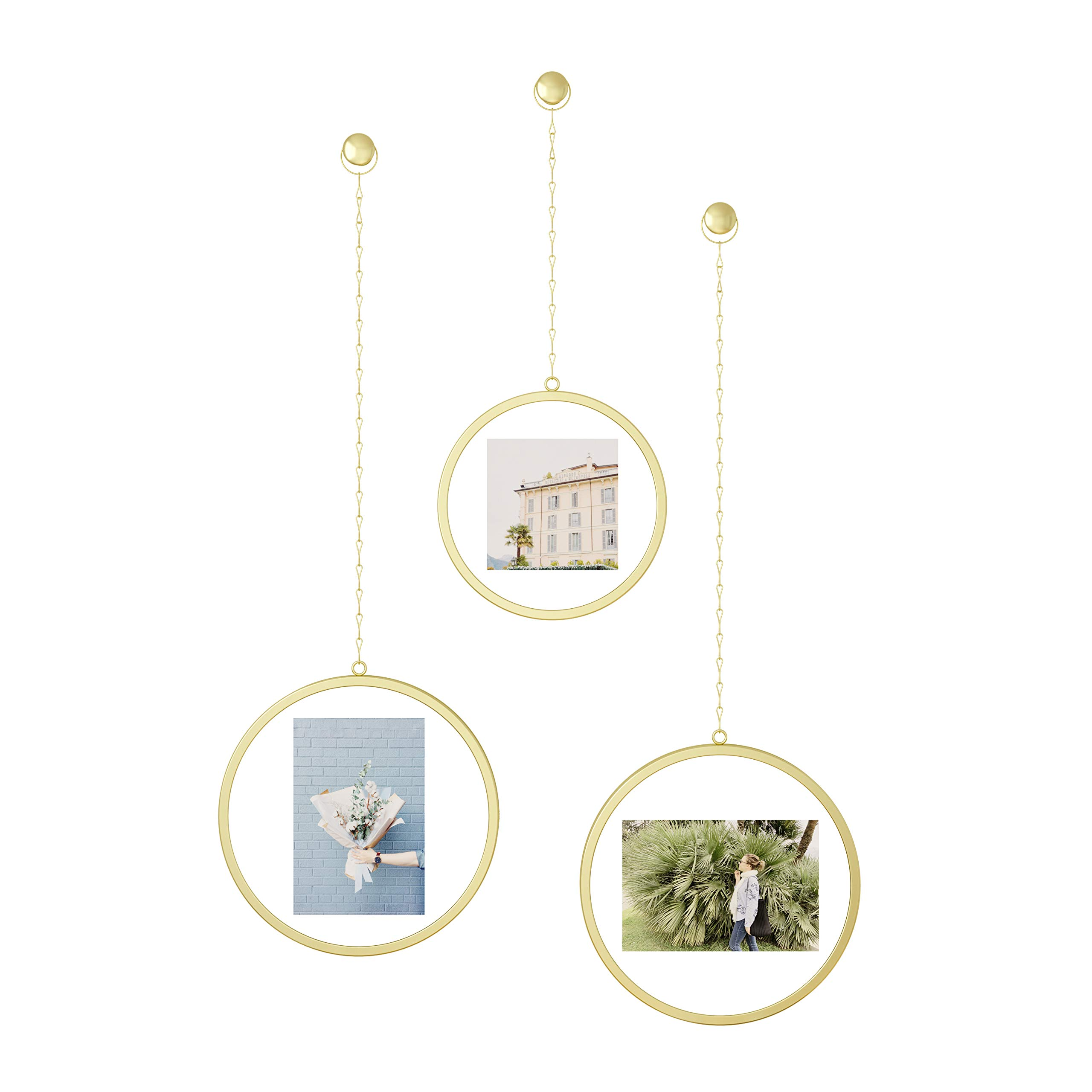 Umbra Fotochain Circular Photo Display, Set of 3, Matte Brass by Umbra