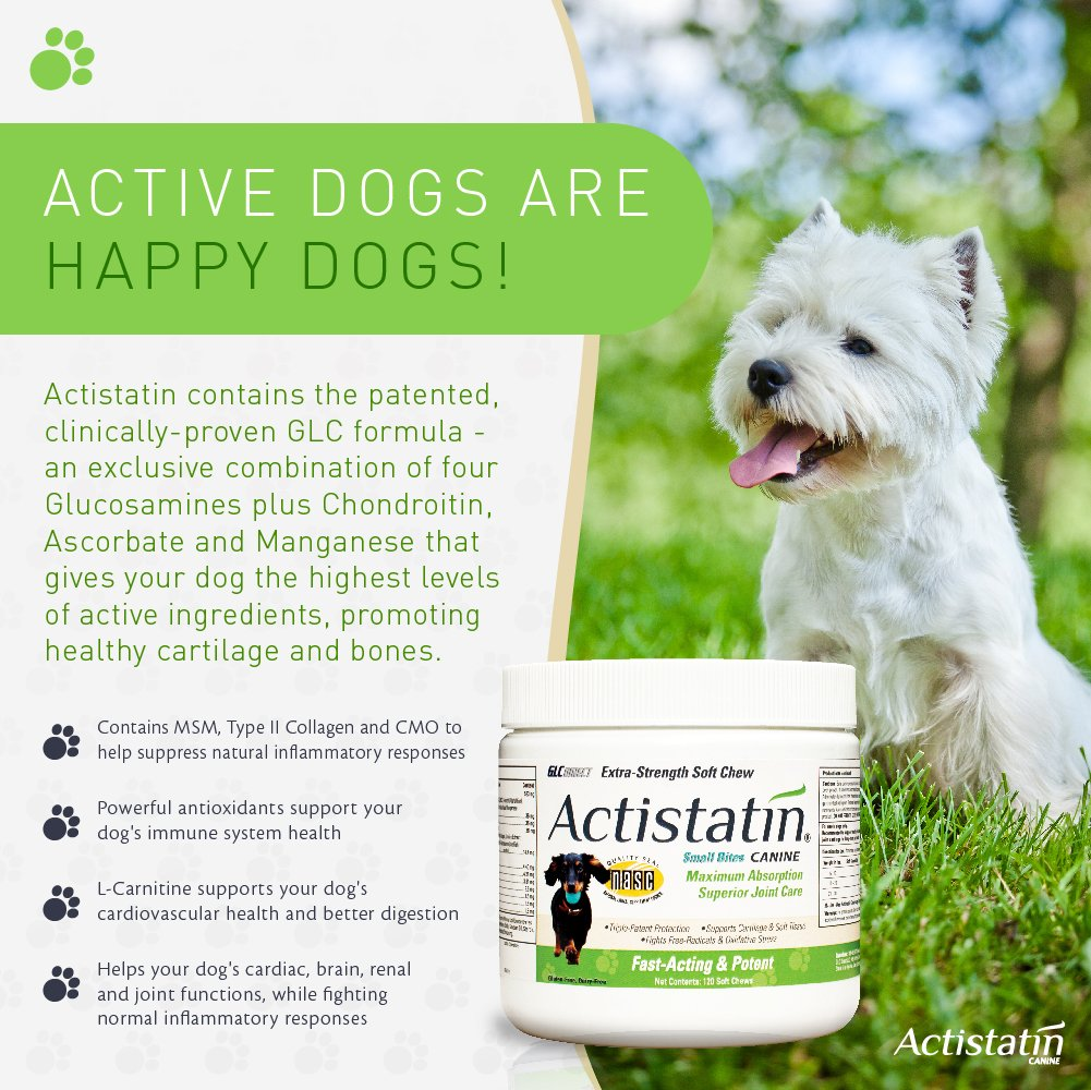 Actistatin Canine Small Dog Soft Chews, 120ct – Patented Extra-Strength Joint, Cartilage, Soft Tissue Supplement: Glucosamine, Chondroitin, Manganese, MSM, L-Carnitine – High Absorption, Fast Results by Actistatin (Image #3)