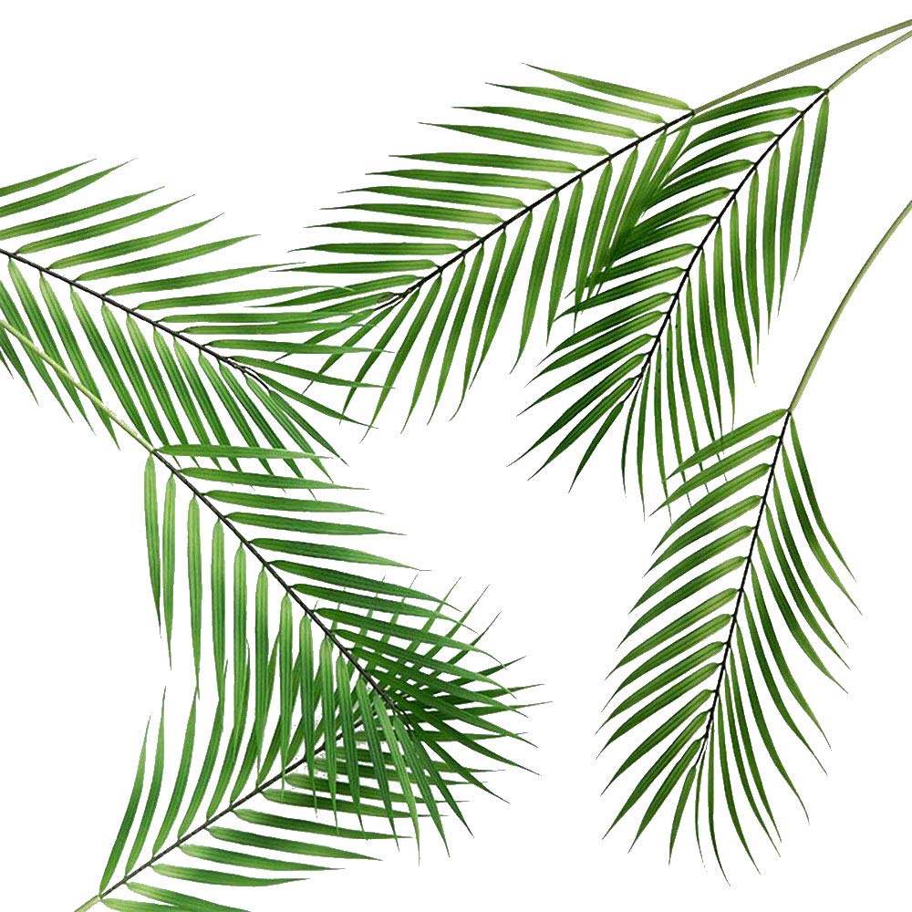 6 Pcs Artificial Tropical Palm Leaves Faux Monstera Leaves Plastic Palm Leaf Greenery for Home Luau Wedding Decor