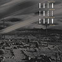 Rain Tree Crow (180G/Remastered/Dl Code)