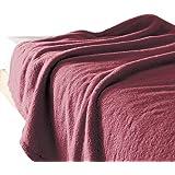 (セシール)cecile 毛布 「くるまった時の気持ちよさ」ふわふわマイクロ毛布 ラズベリーローズ シングル CY-575 CY-575