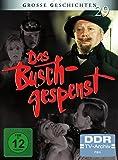 Große Geschichten 29: Das Buschgespenst [2 DVDs]