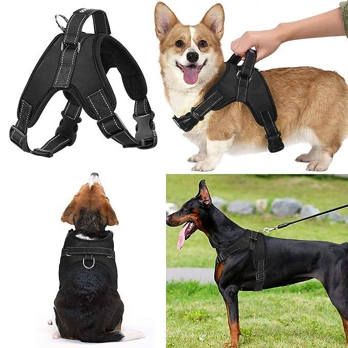 Azyq Arnés ajustable para perros, malla Chaleco cómodo y ...