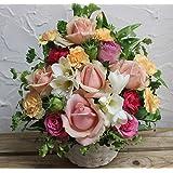 誕生日 お祝いおまかせ pink roses 生花のアレンジメント (PR) Mサイズ ・誕生日祝 結婚祝 開店祝 などギフトに。◎完売につき最短3/2(土)以降のお届けとなります。ただし、休業日に つき3/10(日)お届け不可。