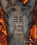 Spark And Flame (English Edition)