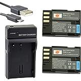 DSTE® アクセサリーキット Pentax D-LI90 D-L90P 互換 カメラ バッテリー 2個+USB充電器キット対応機種 K-01 K-3 K-5 K-5II K-5IIs K-7 645D 645Z