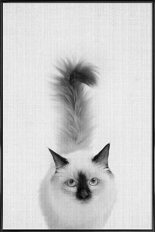 juniqe® Póster 20 x 30 cm blanco y negro gatos - Diseño