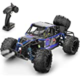 Remote Control Car,1:18 Scale RC Racing High Speed Car,2.4GHz RC Road Monster Truck Included 2 Rechargeable Batteries,4WD All