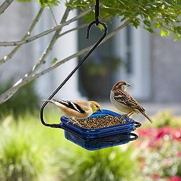Salvaje Bird Colibrí Alimentador Park Jardín Exterior Atracción Ave Alimentador Perfecto Para Jardín Decoración Y Pájaro Buscando Al Amante De Las Aves. Cacoffay,Blue: Amazon.es: Deportes y aire libre