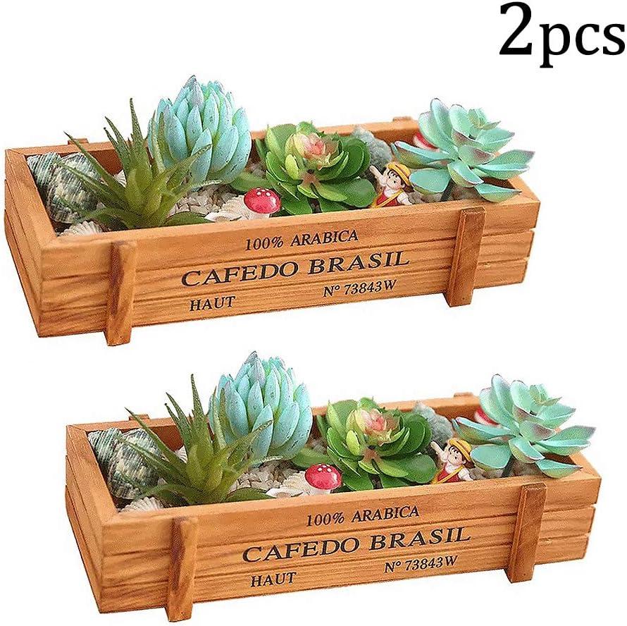kathson Wood Succulent Planter Rectangular Rustic Box Wooden Flower Pots for Plants Indoor Desktop Window (2 Pack)