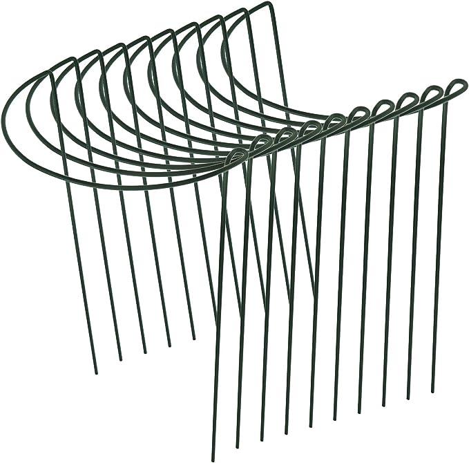 Be In Your Mind - 10 estacas de soporte para plantas, enrejado de escalada semicircular, para jaula de plantas de jardín (30 x 20 cm)