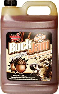 Evolved 41304 Buck Jam Honey Acorn