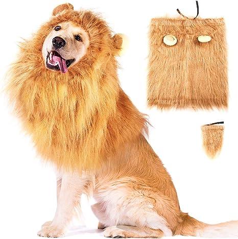 WXJ13 Disfraz de león Perros, Disfraz de león con Orejas y Cola de ...