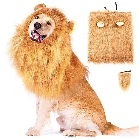 Amazon.com: WXJ13 Disfraz de león para perros, disfraz de ...