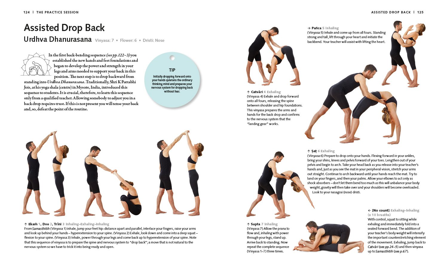 Buy Ashtanga Yoga Gaia Classics Book Online At Low Prices In India Back Gt Gallery For Inhaling And Exhaling Diagram Reviews Ratings