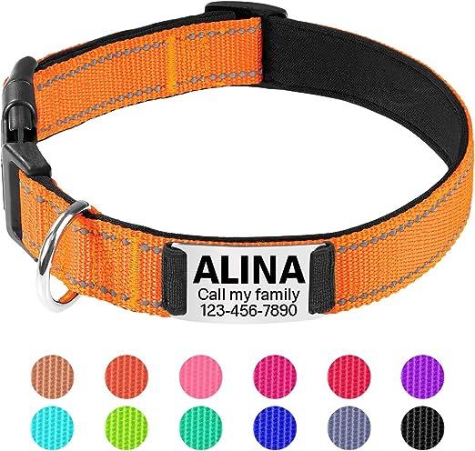 TagME Collar de Perro Reflectante Personalizado,Placa de Acero Inoxidable,Grabado con Nombre y Número de Teléfono,Deslizar en Las Etiquetas de Identificación del Perro,Naranja: Amazon.es: Productos para mascotas