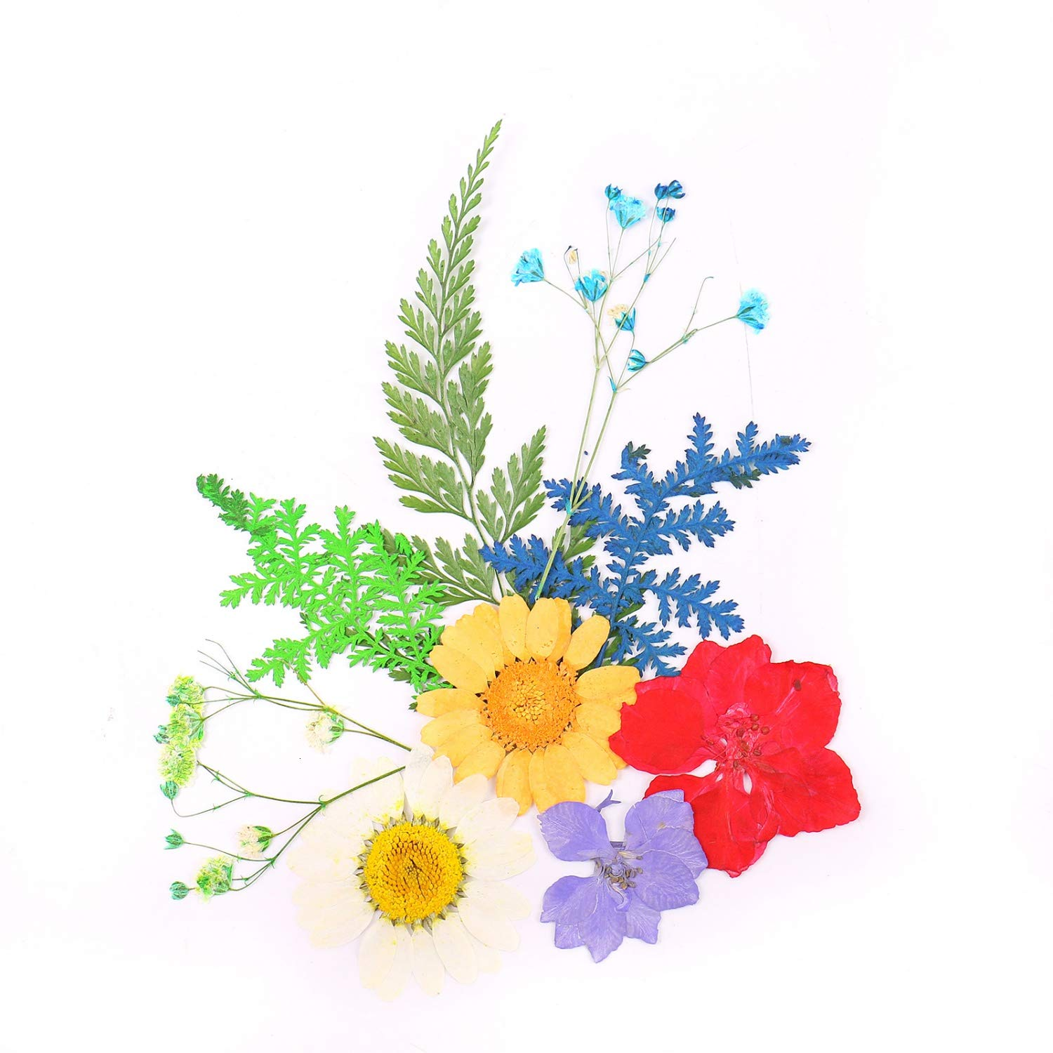 Pomeat Real Dried Pressed Flowers Assorted Colorful Pressed Dried Flowers for Resin Arts Crafts Jewelry Making
