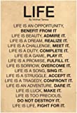 Laminated Mother Teresa Life Quote Poster 13 x 19in