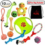 Dog Toys 10 Pack Gift Set + Free Bag – Ropes with Knots Bones Balls Frisbee Chew Squeak Plush Duck Toy for Small and Medium Dogs