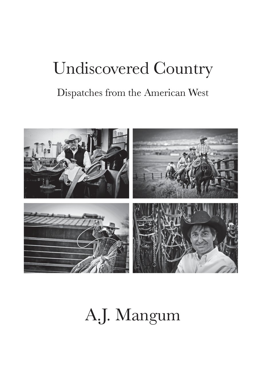 Read Online Undiscovered Country PDF