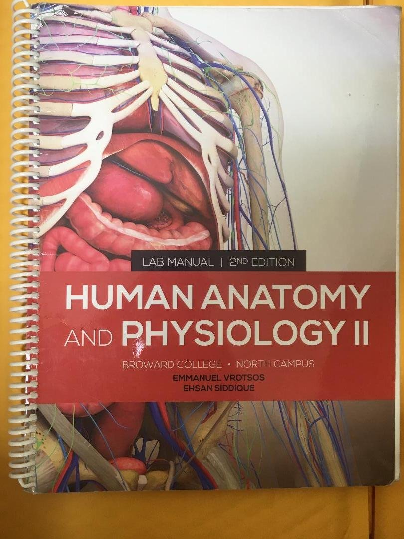 Colorful Anatomy And Physiology College Book Motif - Human Anatomy ...