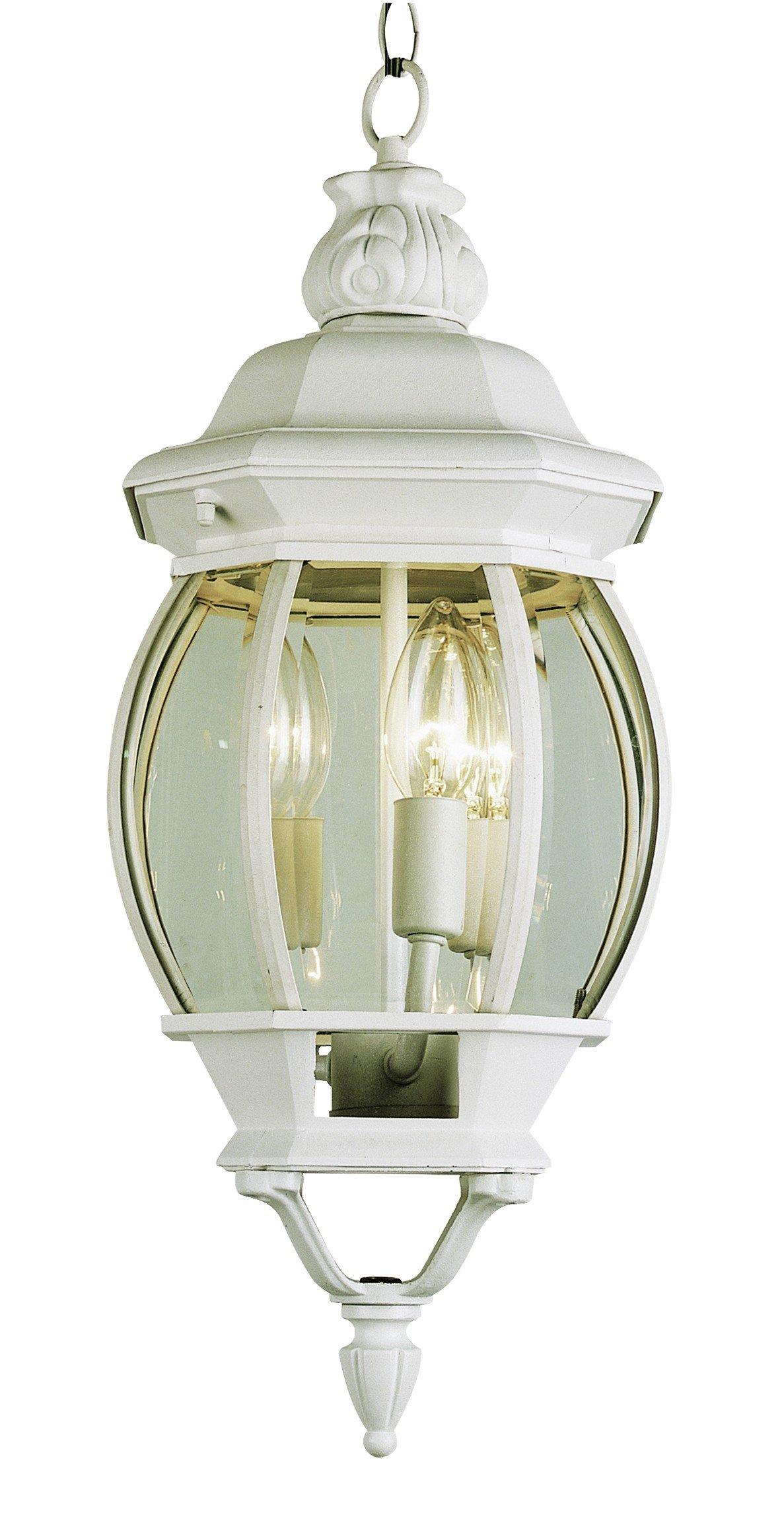 Trans Globe Lighting 4066 WH Outdoor Parsons 25'' Hanging Lantern, WHITE