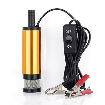 Amazon.com: Bomba de gasóleo sumergible de 12 V para ...