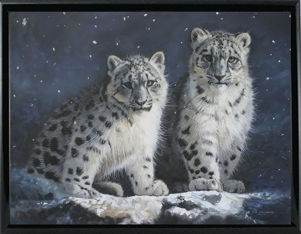 Young Snow Leopards into the Dark 2011 by Pip McGarry in a 15.08
