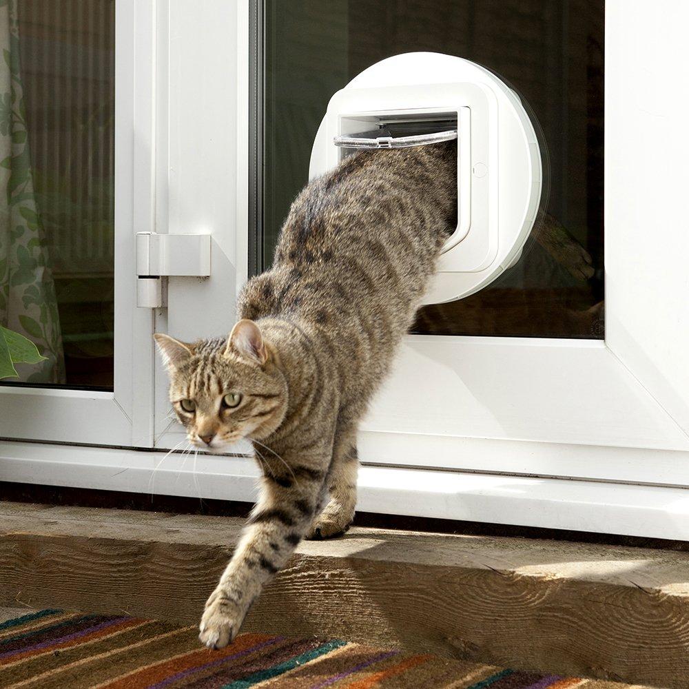 Amazon.com : SureFlap Cat Flap Mounting Adaptor / White : Pet Doors : Pet Supplies & Amazon.com : SureFlap Cat Flap Mounting Adaptor / White : Pet ... Pezcame.Com