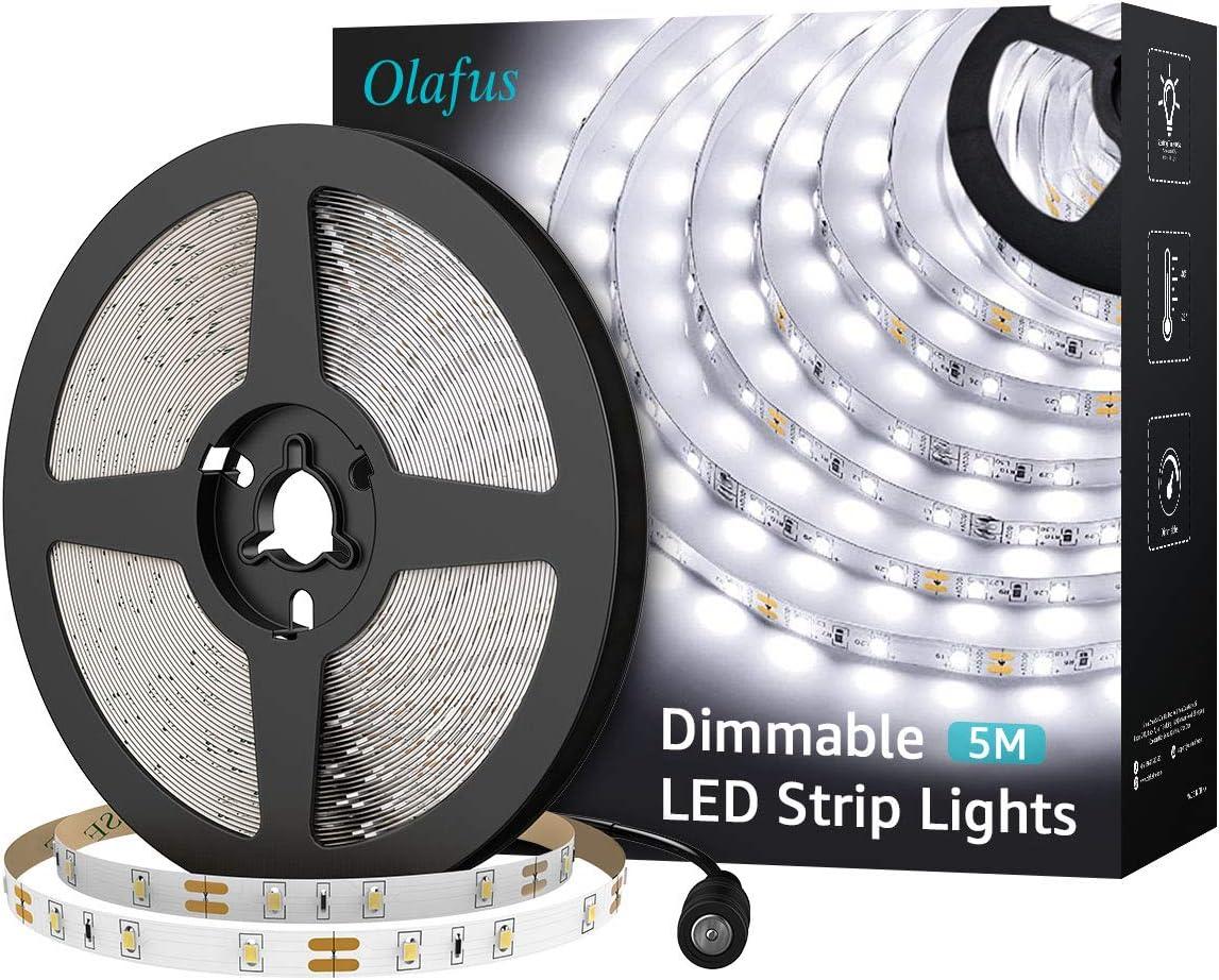 Olafus Kit Ruban LED 5M Dimmable avec Adaptateur, Blanc Froid 6000K, Bande LED Lumineuse 2835 avec Variateur et Alimentation 12V pour Décoration Intérieur DIY Noël Fête Cuisine Bar etc.