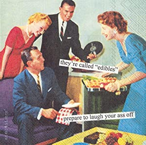 Boston International IHR Anne Taintor, 20 Count Cocktail Beverage Paper Napkins, 5 x 5-Inches, Edibles
