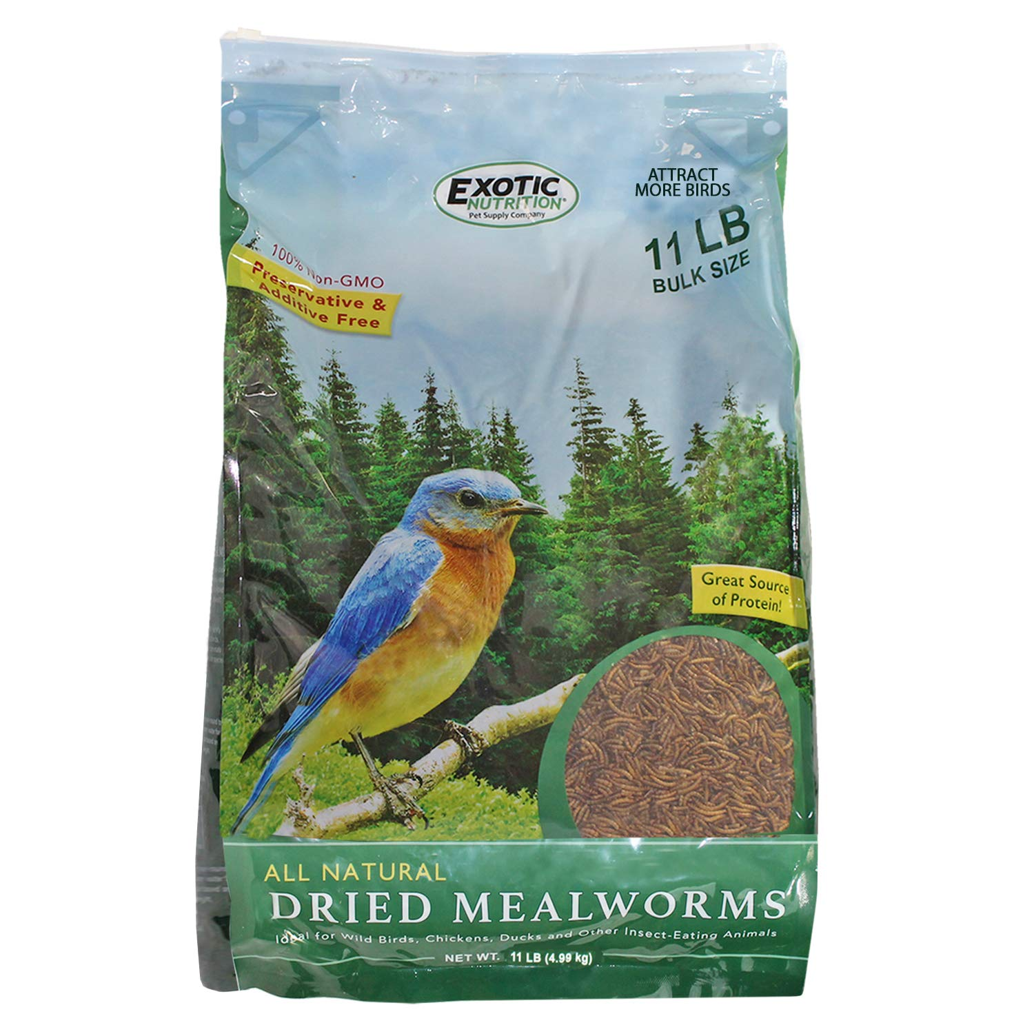 Bulk Dried Mealworms (11 lb.) Approx. 175,000 - High Protein Insect Treat for Chickens, Wild Birds, Hedgehogs, Bluebirds, Reptiles, Sugar Gliders, Opossums, Skunks, Lizards, Bearded Dragon, Fish by Exotic Nutrition