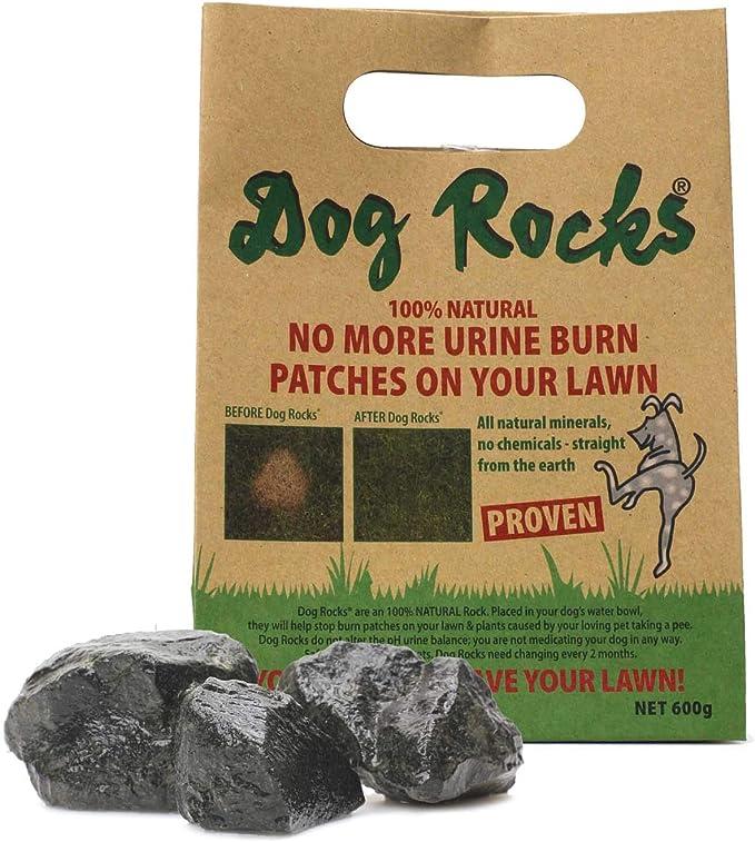 Dog Rocks – Bolso Preventivo de Parche de Orina, 600 g