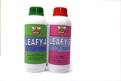 RADONGROW Hydroponic Nutrient for Leafy Vegetables