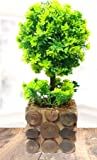 Litleo Artificial Plant with Pot, for Home Office Decoration or Gift (Free Normal Shipping)